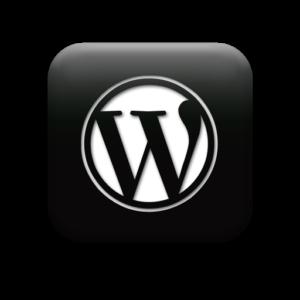 Wordpress Nischenseite